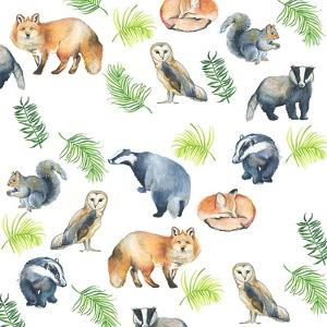 Woodland Animals by Elizabeth Rider