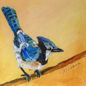 Blue Jay Blessing by Elizabeth St. Hilaire