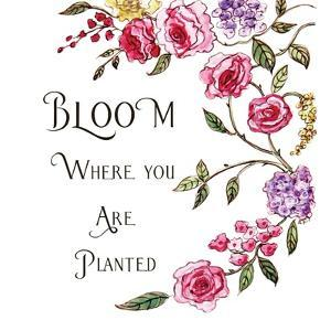 Bloom Where You're Planted by Elizabeth Tyndall