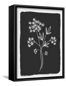 Charcoal Botanical I by Elizabeth Tyndall