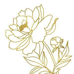Gold Floral V by Elizabeth Tyndall