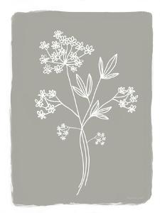 Gray Botanical II by Elizabeth Tyndall