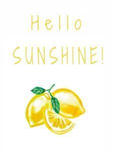 Hello Sunshine by Elizabeth Tyndall