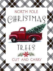 North Pole by Elizabeth Tyndall