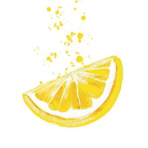 The Squeezed Lemon by Elizabeth Tyndall