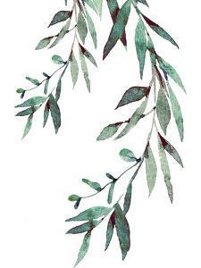 Watercolor Leaves II by Elizabeth Tyndall