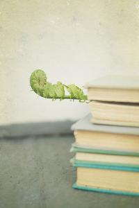 Antique Books with Leaf by Elizabeth Urqhurt