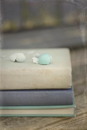 Boken Robin's Egg on Vintage Books