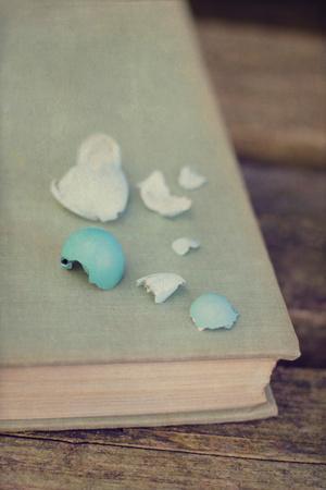Broken Eggs on a Book