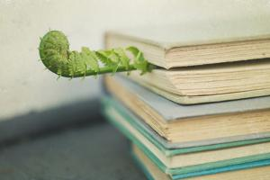 Stack of Grey Books by Elizabeth Urqhurt