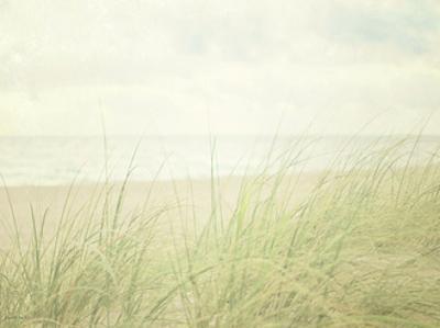 Beach Grass II by Elizabeth Urquhart