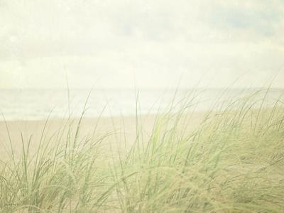 Beach Grass II