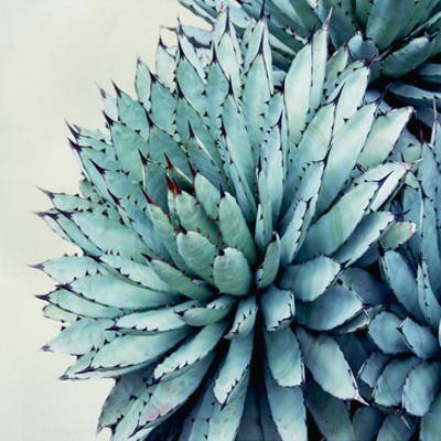 Green Crush IX by Elizabeth Urquhart