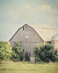 Late Summer Barn II Crop by Elizabeth Urquhart