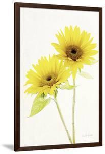 Light and Bright Floral VII by Elizabeth Urquhart