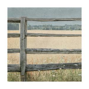 Neutral Country I Crop by Elizabeth Urquhart