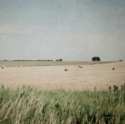 Neutral Country II Crop by Elizabeth Urquhart