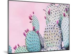 Pink Crush VI by Elizabeth Urquhart