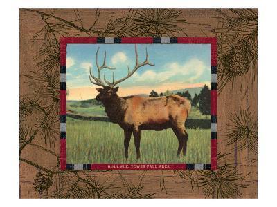 Elk I-Hugo Wild-Art Print