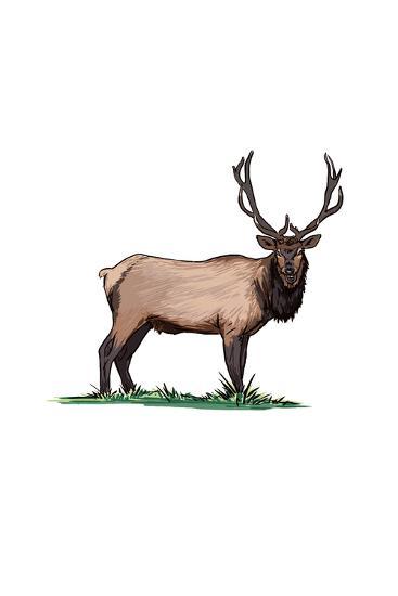Elk - Icon-Lantern Press-Art Print