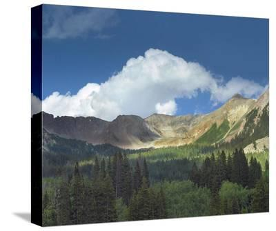 Elk Mountains near Crested Butte, Colorado-Tim Fitzharris-Stretched Canvas Print