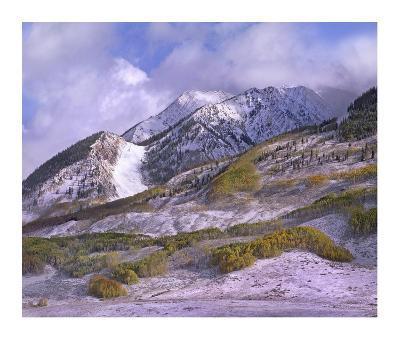 Elk Mountains with snow in autumn, Colorado-Tim Fitzharris-Art Print
