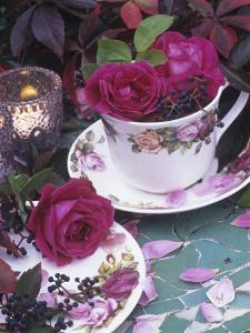 Table and Tableware Decorated with Roses by Elke Borkowski
