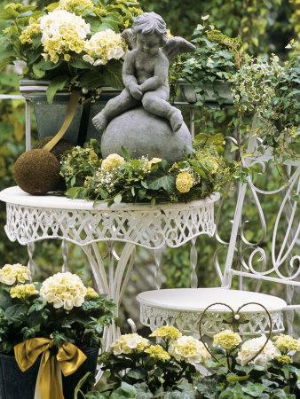 White Hydrangeas and a Cherub on a Terrace