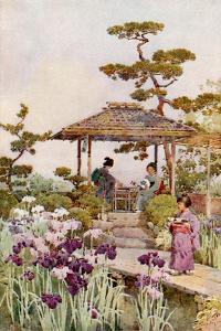 An Iris Garden by Ella Du Cane