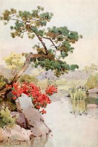 Azalea and Pine-Tree by Ella Du Cane