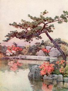 Azaleas in a Kyoto Garden by Ella Du Cane