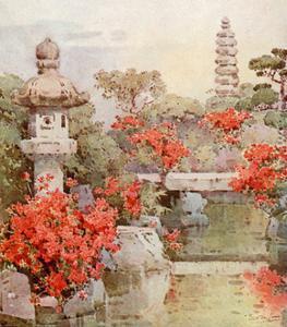 Azaleas, Kyoto by Ella Du Cane