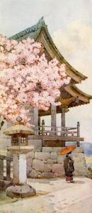 Cherry-Tree at Kyomidzu by Ella Du Cane