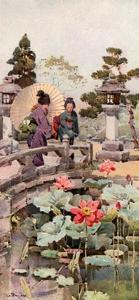 Lotus Flowers by Ella Du Cane