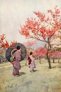 Peach Blossom by Ella Du Cane