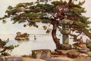 Pine-Tree at Matsushima by Ella Du Cane