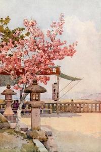 The Pink Cherry by Ella Du Cane
