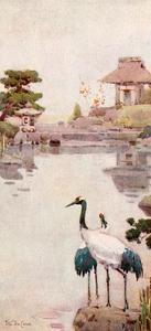 The Storks by Ella Du Cane