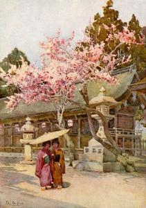 The Time of the Plum Blossoms by Ella Du Cane