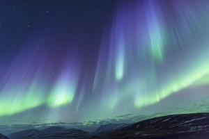 Iceland, Akureyri. Northern Lights glowing. by Ellen Goff