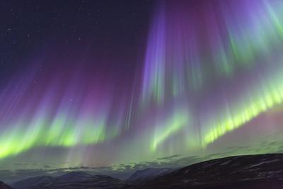 Iceland, Akureyri. The northern lights glow in unbelievable colors.