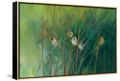 Summer Sparrows