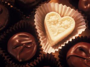 Chocolates by Ellen Kamp