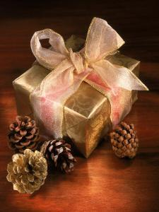 Christmas Gift with Gold Ribbon and Pinecones by Ellen Kamp