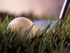 Golf Ball in Ruff with Iron in Background by Ellen Kamp