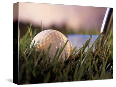 Golf Ball in Ruff with Iron in Background