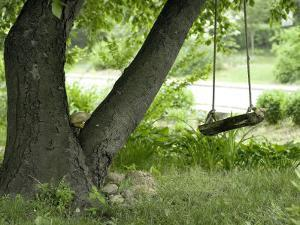Wooden Swing Hanging from Tree by Ellen Kamp
