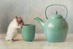 The Teapot by Ellen Van Deelen