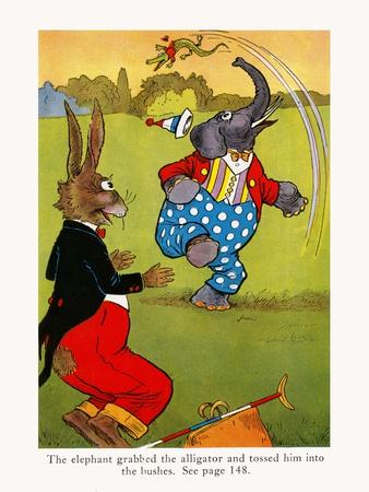 The Elephant Grabbed The Alligator