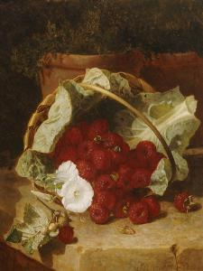 Raspberries in a Cabbage Leaf Lined Basket with White Convulus on a Stone Ledge, 1880 by Eloise Harriet Stannard